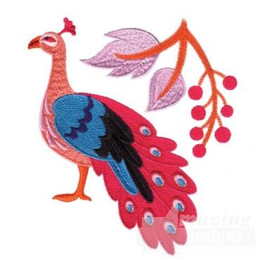 Jacobean Peacock 8