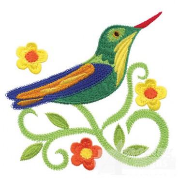 Jacobean Hummingbird 6