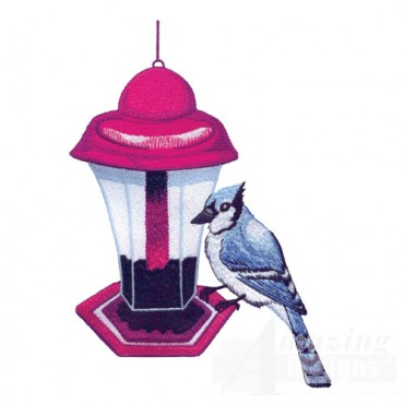 Blue Jay And Feeder