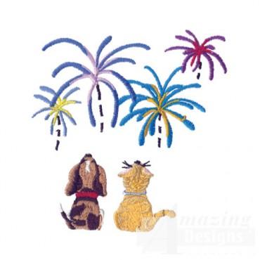 Fireworks Watching