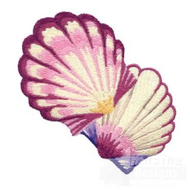 Seashells 1