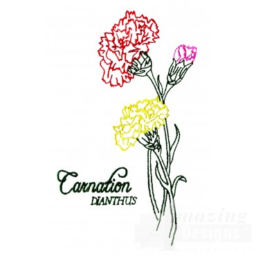 Large Carnation Dianthus Embroidery Design