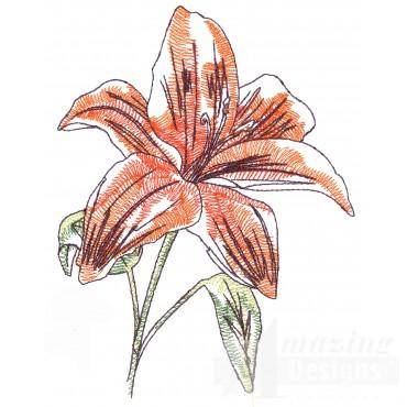 Lily Sketchbook Flower Embroidery Design