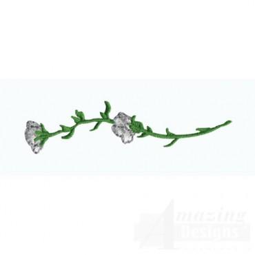 White Carnation Stem