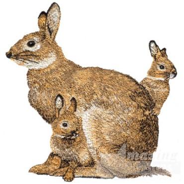 Rabbit with Babies