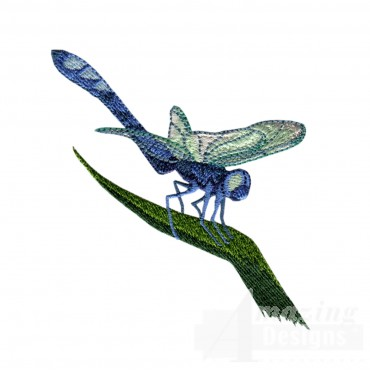 Swndd208 Dragonfly Embroidery Design