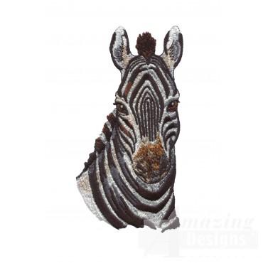 Zebra Head Serengeti