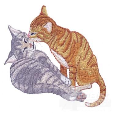 Grooming Kittens