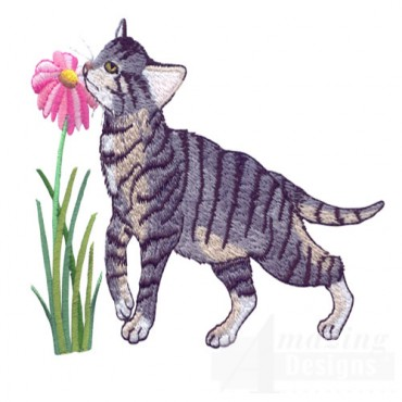 Kitten And Blooming Flower