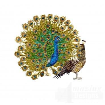 Swnpa132 Peacock Embroidery Design