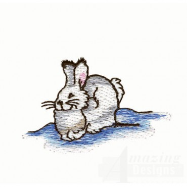 Arctic Rabbit