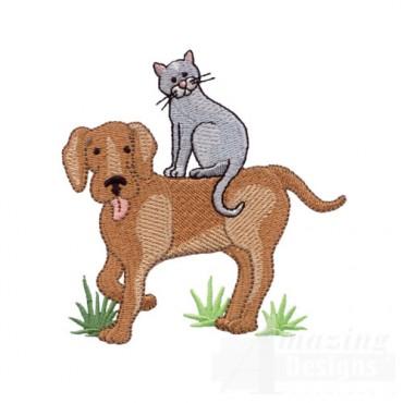 Cat Riding a Dog
