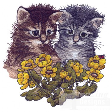 Kittens And Bugs