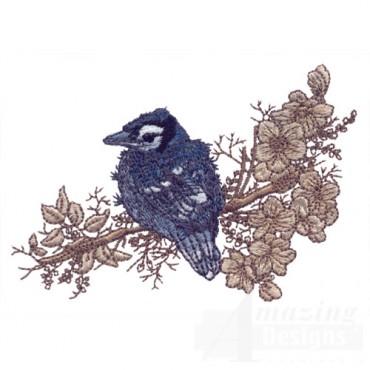 Perched Bird 3