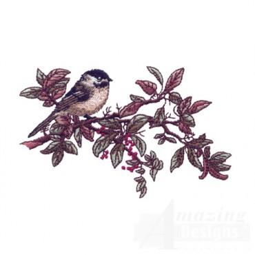 Perched Bird 5