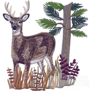Buck In Foliage