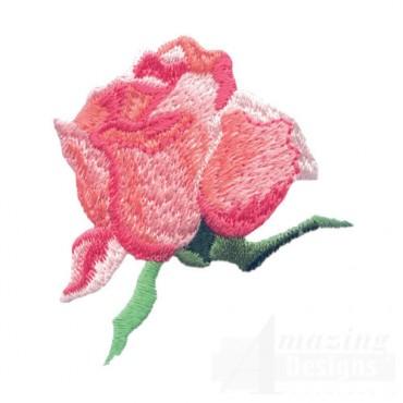 Rose 24