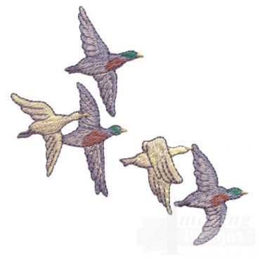 Flying Duck Group