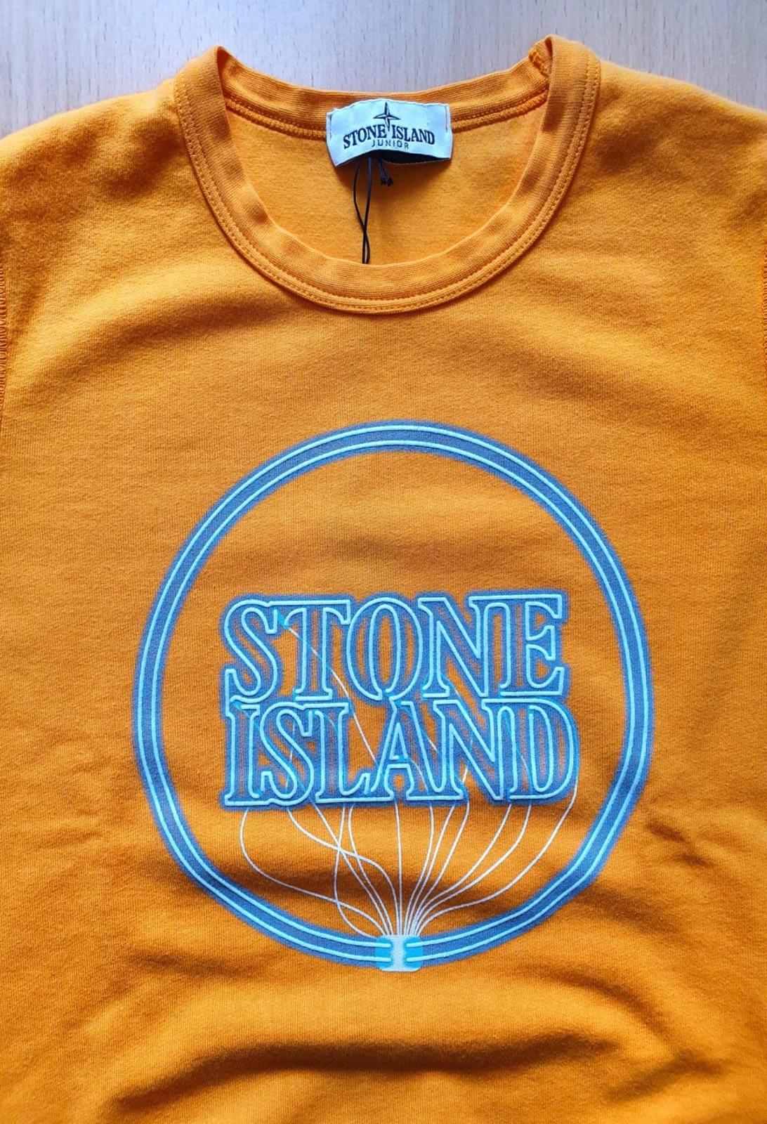 FELPA GIROCOLLO CON LOGO LUMINESCENTE stone island   Felpe   741662340V0032
