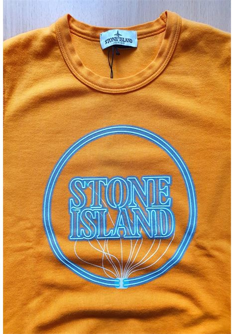FELPA GIROCOLLO CON LOGO LUMINESCENTE stone island | Felpe | 741662340V0032