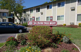 Image of Plum Tree West Apartments in Gilroy, California