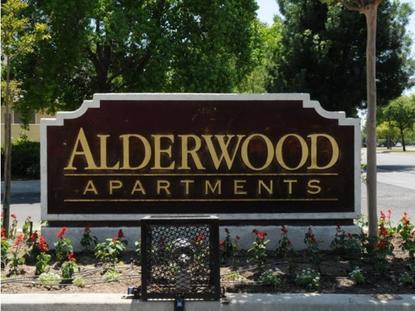 Image of Alderwood