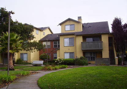 Image of Bay Oaks
