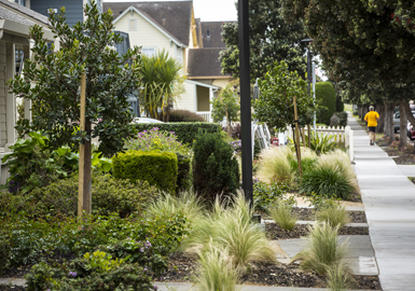 Image of Main Street Park in Half Moon Bay, California