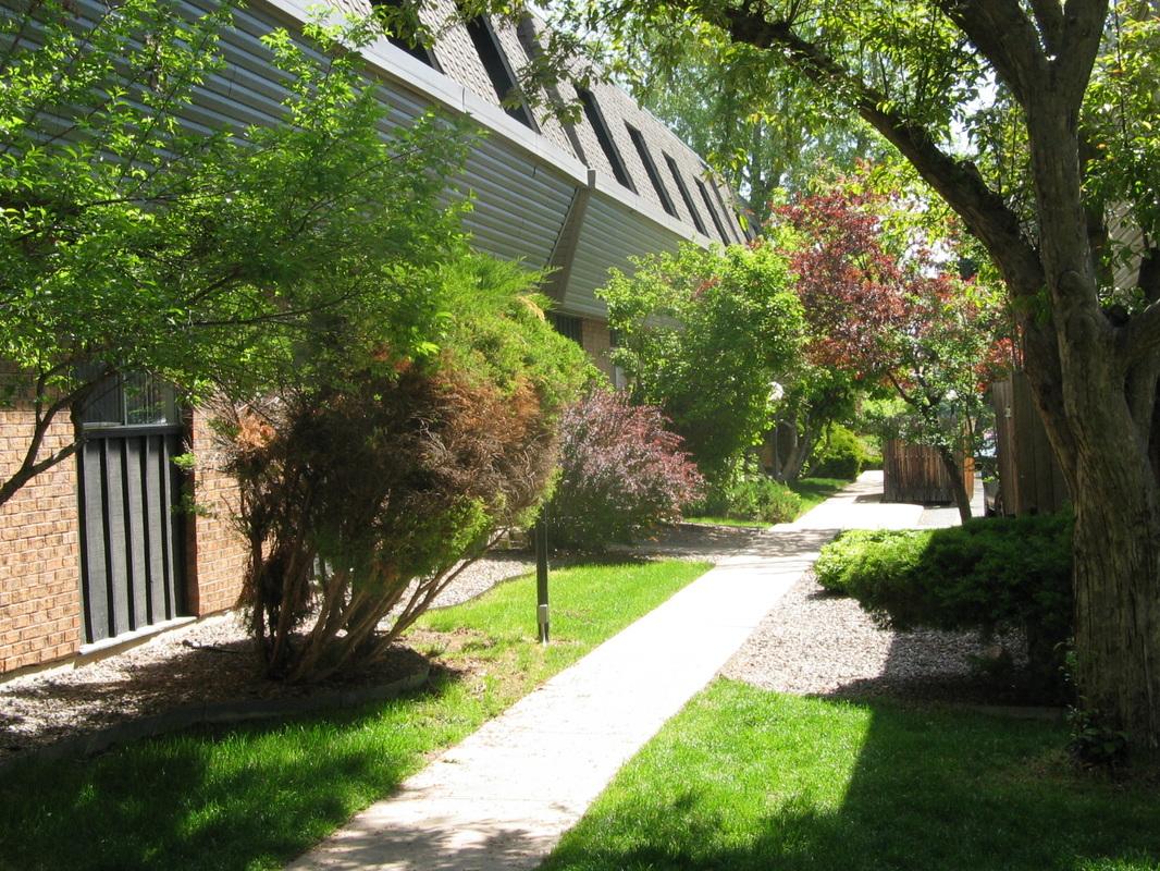 Image of Belmar Groves in Lakewood, Colorado