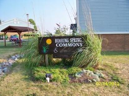 Image of Roaring Springs Commons