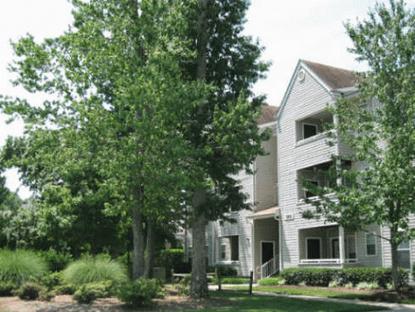 Image of Wellesley Woods