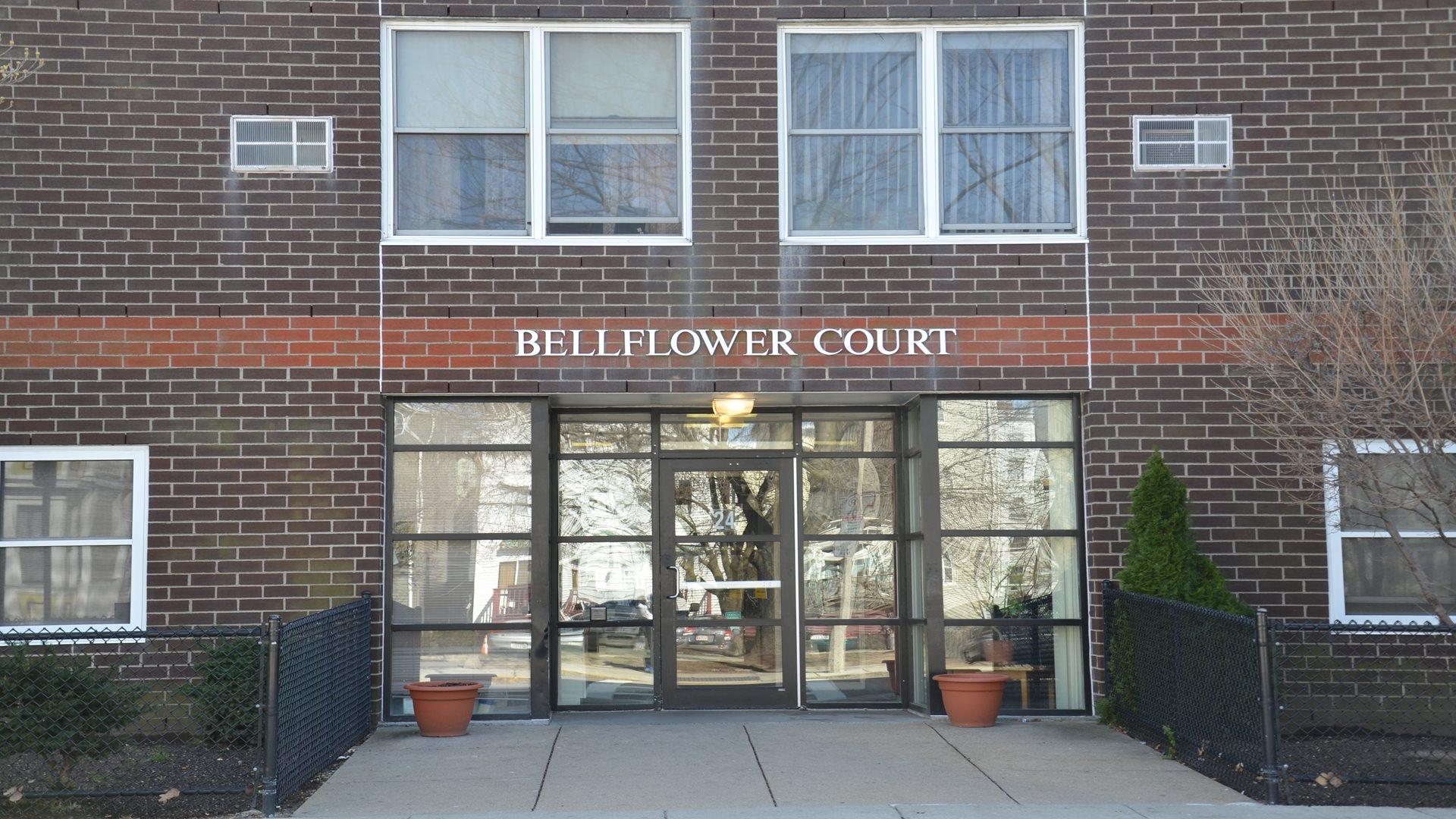 Image of Bellflower Street