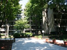 Image of Daniel F Burns Apartments in Cambridge, Massachusetts