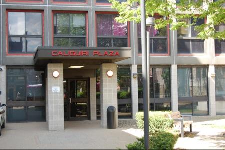 Image of Caliguiri Plaza in Pittsburgh, Pennsylvania