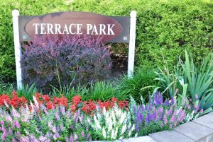 Image of Terrace Park