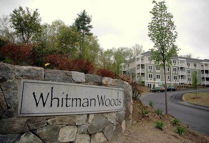 Image of Whitman Woods