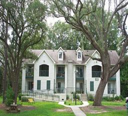 Image of Grand Oak in Charleston, South Carolina
