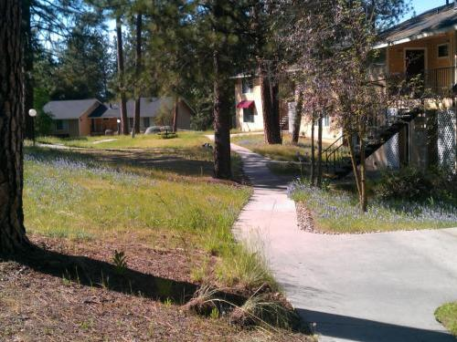 Image of Oakhurst Apartments in Oakhurst, California