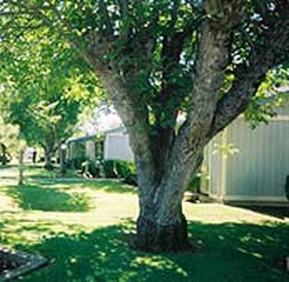 Image of Austin Manor Autumn Village