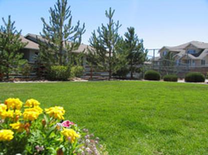 Image of Southridge Apartments
