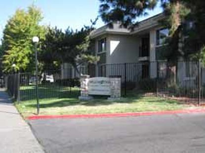 Image of Willow Tree Apartments