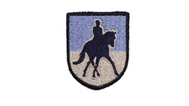 Dressage Patch