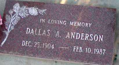 ANDERSON, DALLAS A. - Apache County, Arizona | DALLAS A. ANDERSON - Arizona Gravestone Photos
