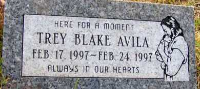 AVILA, TREY BLAKE - Apache County, Arizona | TREY BLAKE AVILA - Arizona Gravestone Photos