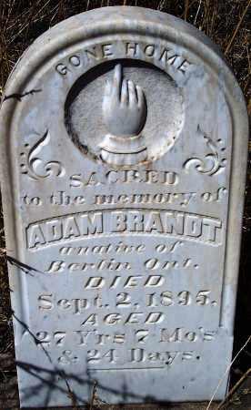 BRANDT, ADAM - Apache County, Arizona   ADAM BRANDT - Arizona Gravestone Photos