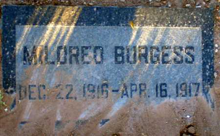BURGESS, MILDRED - Apache County, Arizona | MILDRED BURGESS - Arizona Gravestone Photos
