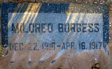 BURGESS, MILDRED - Apache County, Arizona   MILDRED BURGESS - Arizona Gravestone Photos