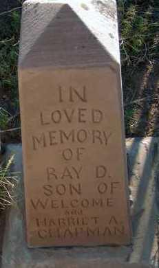 CHAPMAN, RAY D. - Apache County, Arizona | RAY D. CHAPMAN - Arizona Gravestone Photos
