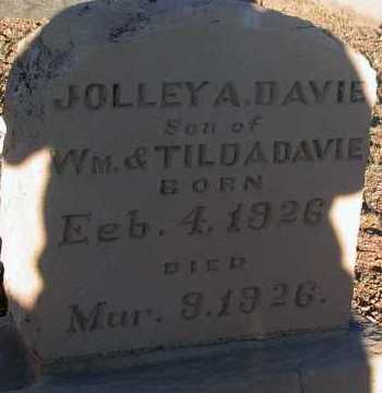DAVIE, JOLLEY A. - Apache County, Arizona | JOLLEY A. DAVIE - Arizona Gravestone Photos