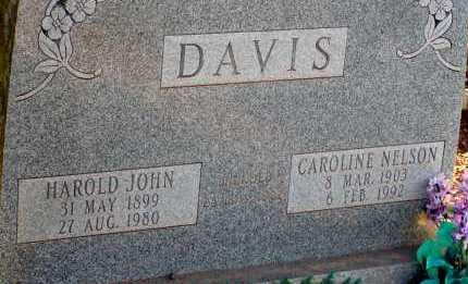 NELSON DAVIS, CAROLINE - Apache County, Arizona | CAROLINE NELSON DAVIS - Arizona Gravestone Photos